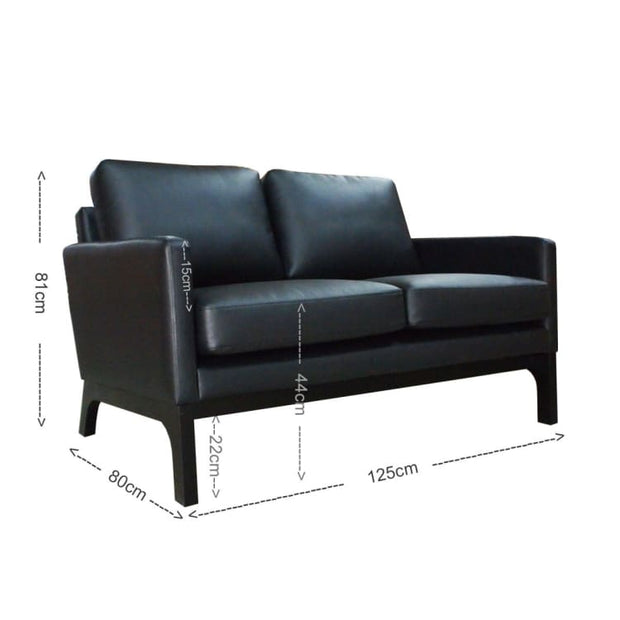 Klein 2 Seater Sofa – Black - Home And Style