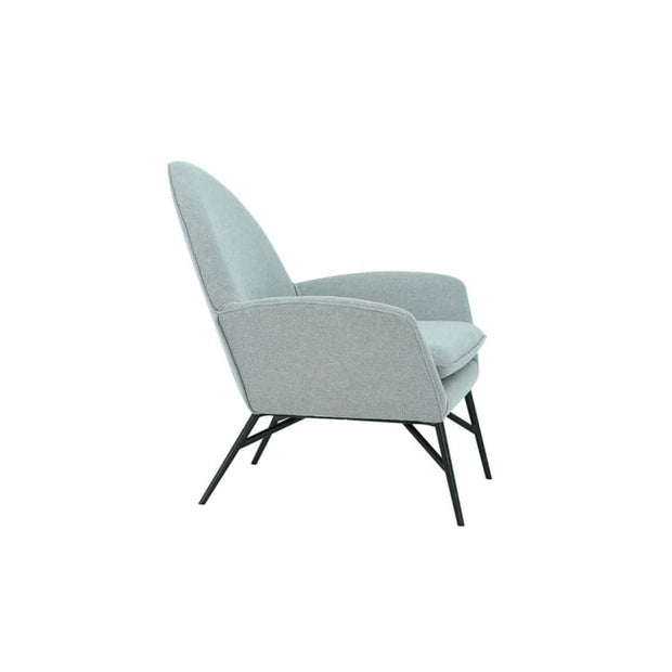 Lavinda Lounge Chair with Matt Black Epoxy Leg, Pale Silver - Home And Style