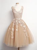 Terrific A-Line Sleeveless Champagne Short Homecoming Dresses,Appliqued Tulle Homecoming Dresses,VPBD157