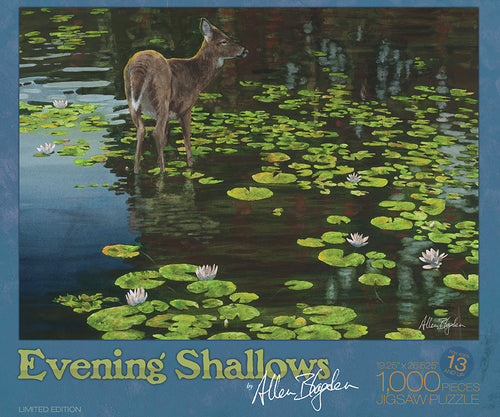 Evenings Shallows Puzzle