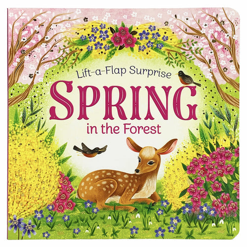 Spring in the Forest Board Book