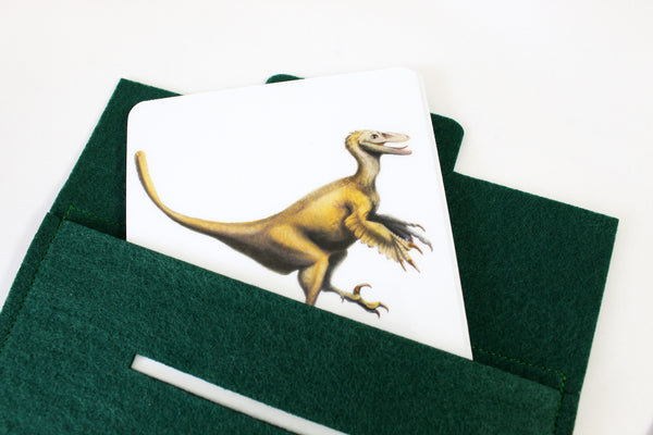 Mixed dinosaurs, Montessori flashcards, Safari Toobs