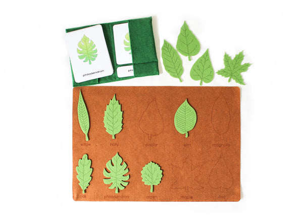 10 Types of leaves with 3-part cards