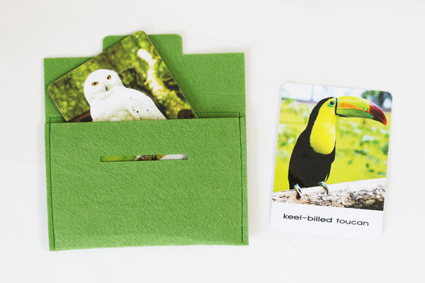 Exotic Birds, large flashcards, Safari Toobs