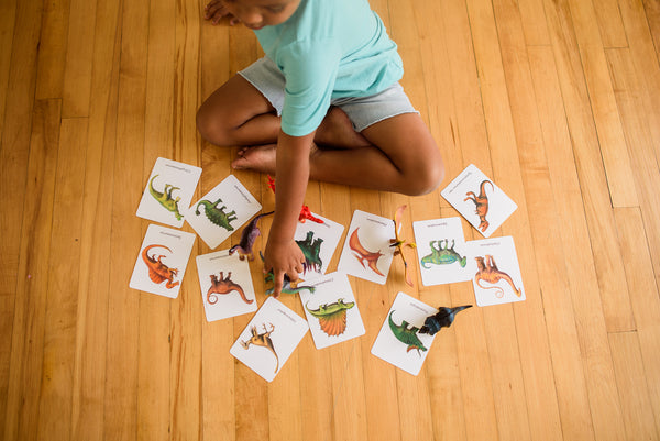 12 Mixed dinosaurs, flashcards
