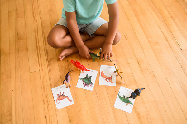 28 Dinosaurs, large 3-part cards with pouches