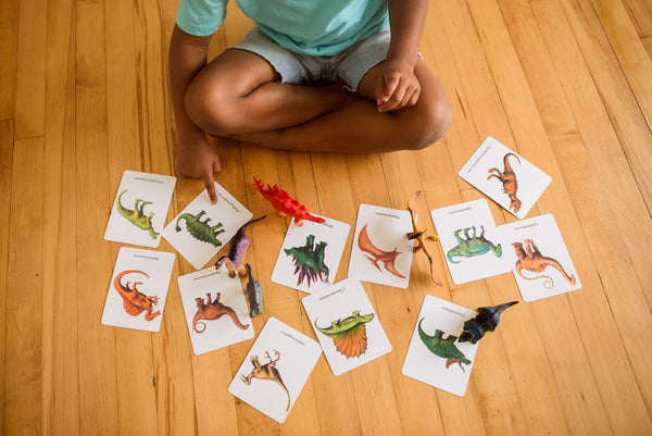 28 Dinosaurs, flashcards with pouches