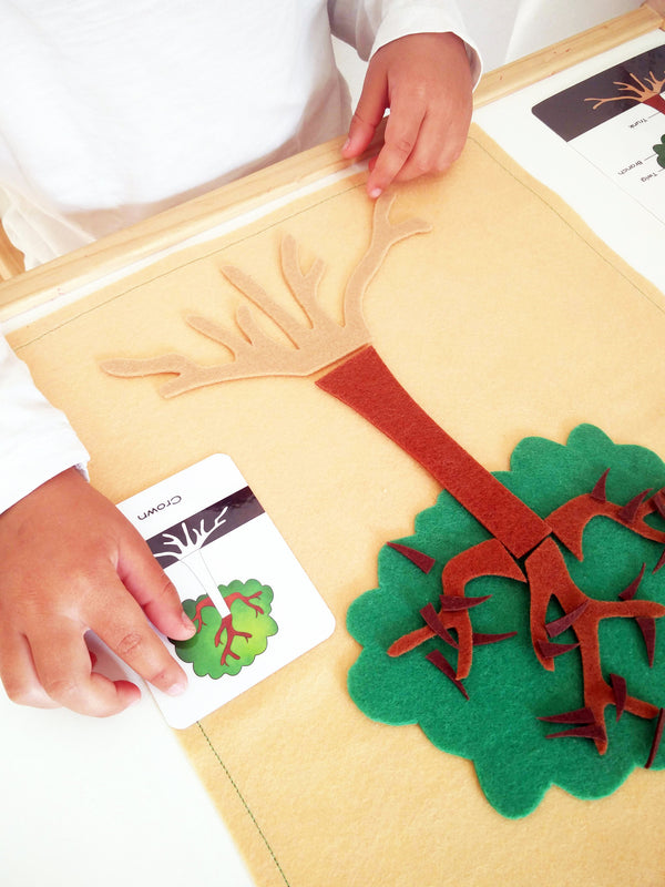 Digital Download, Parts of a tree, Montessori 3 part cards