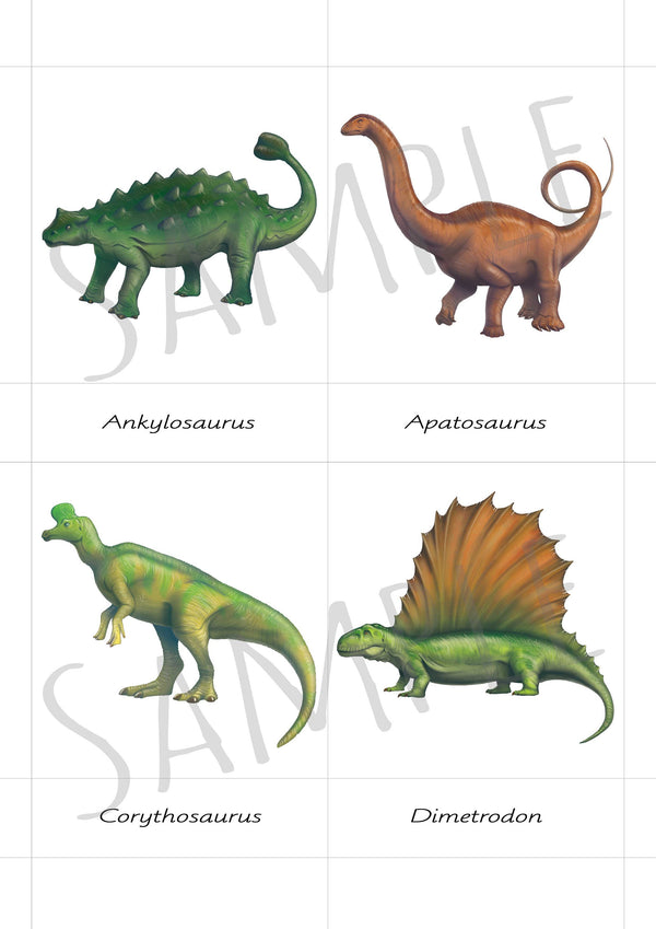 Digital Download, Safari Toobs, Mixed dinosaurs, 3 part cards