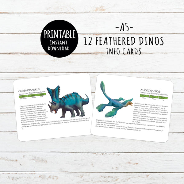 Digital Download, Safari Toobs, Feathered dinosaurs, info cards