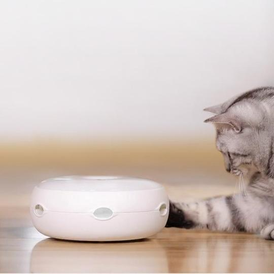Amazing Interactive Cat Toy