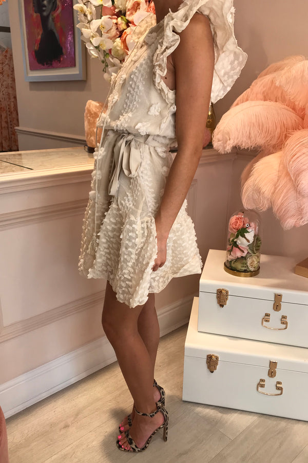 SIENNA BEIGE RUFFLE DETAILED MINI DRESS