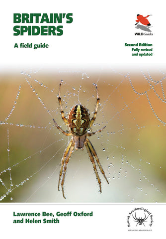 Britain's Spiders (WILDGuides): A Field Guide