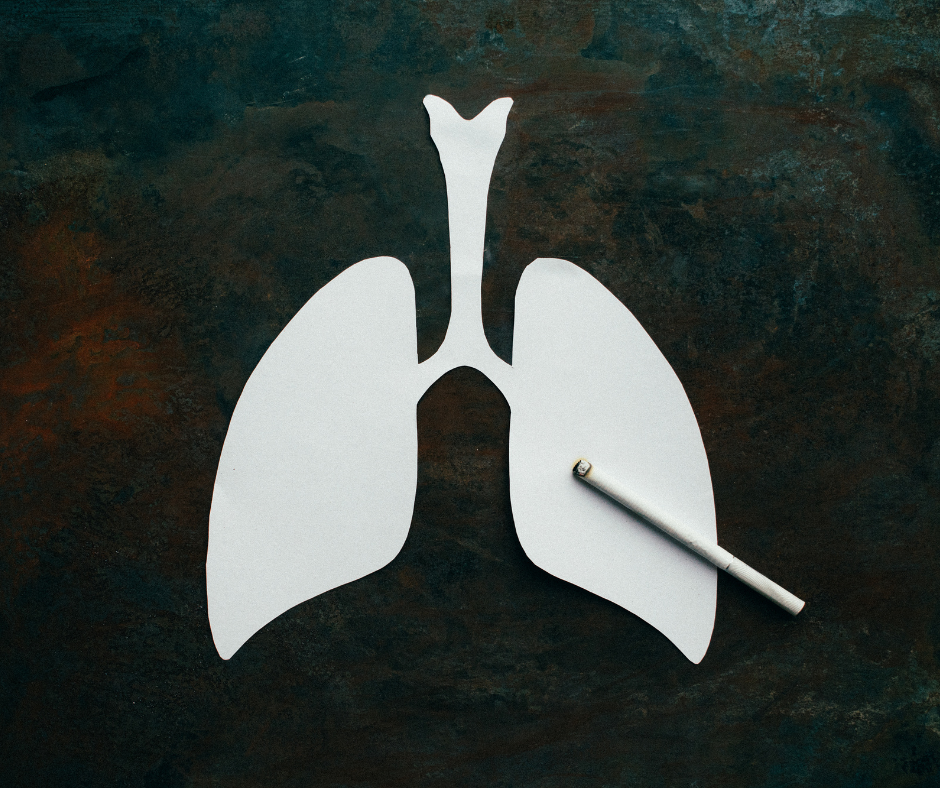 drawing of lungs with a cigarette on top