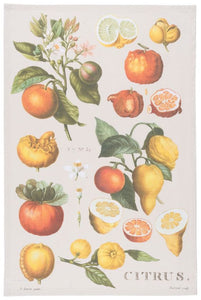 Citrus Dish Towel