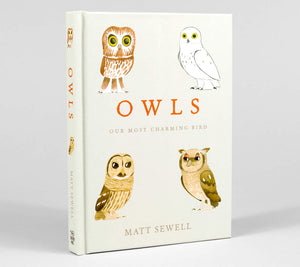 Owls - Matt Sewell