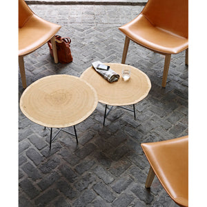Alburni Occasional Table Low Version