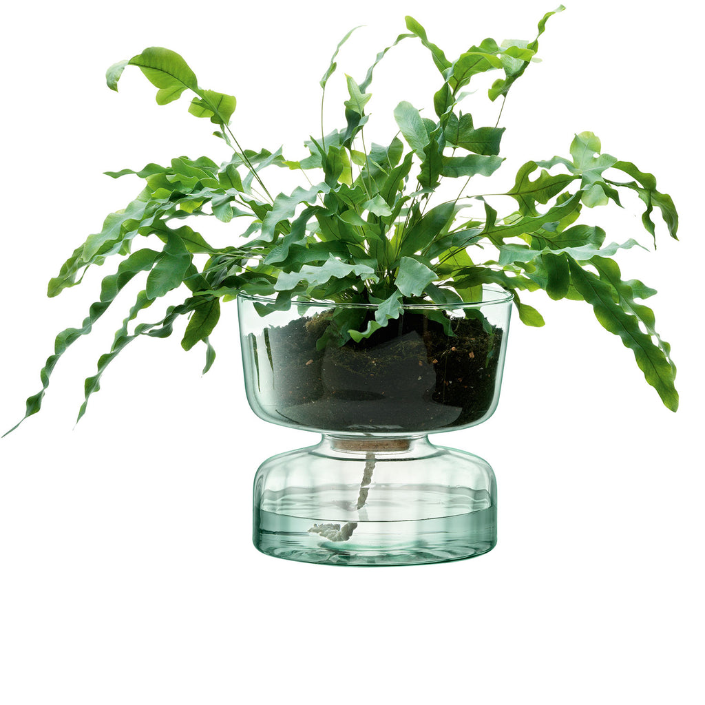 Planted Canopy Self Watering Planter 22cm