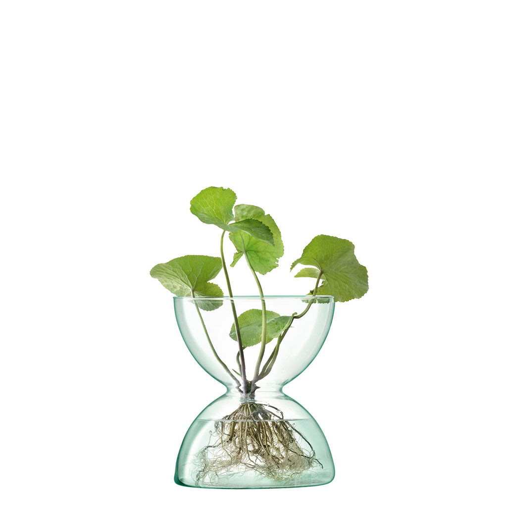 Planted Canopy Glass Vase 24cm