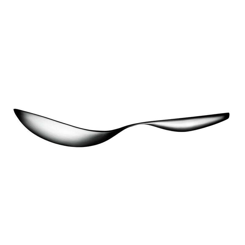 Collective Tools Serving Spoon