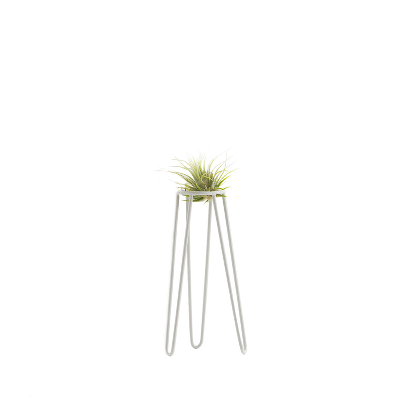 Table Tower Air Plant & Stand