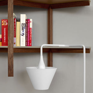 Biplan Wall Shelf