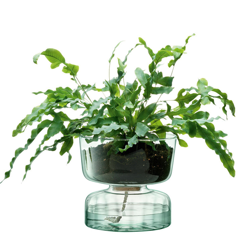 Canopy Self Watering Planter 22cm