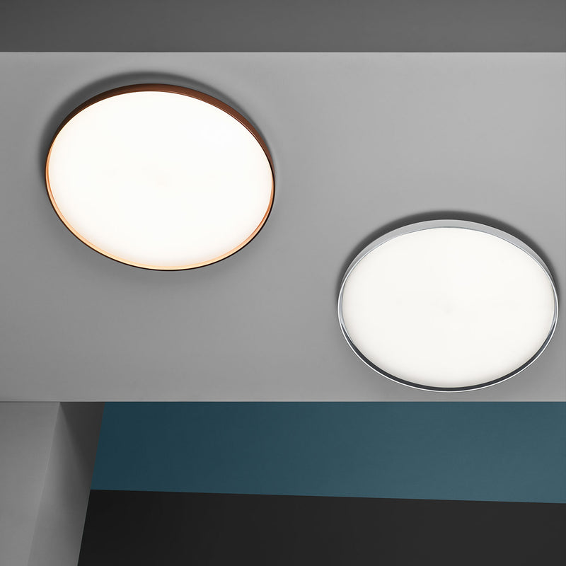 Clara Wall & Ceiling Light, White