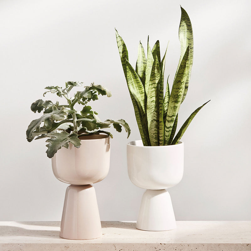 Nappula Planter, Small