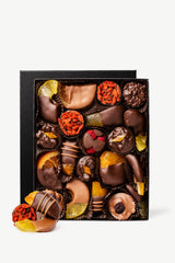 Chocolate Covered Dipped Fruit Gourmet Chocolates Gift Box