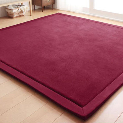 Evisnic Super Soft Coral Velvet Home Rugs