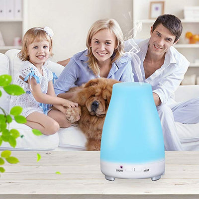 300ml Remote Control LED Cool Mist Humidifier