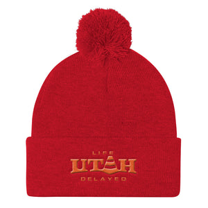 Life Delayed Pom Pom Knit Cap