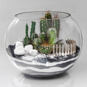 Terrarium Glass Sphere