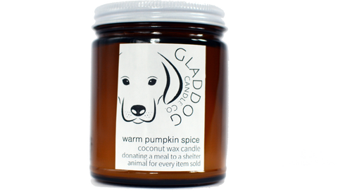 Warm Pumpkin Spice Coconut Wax Candle - Products To Build a Better Brain