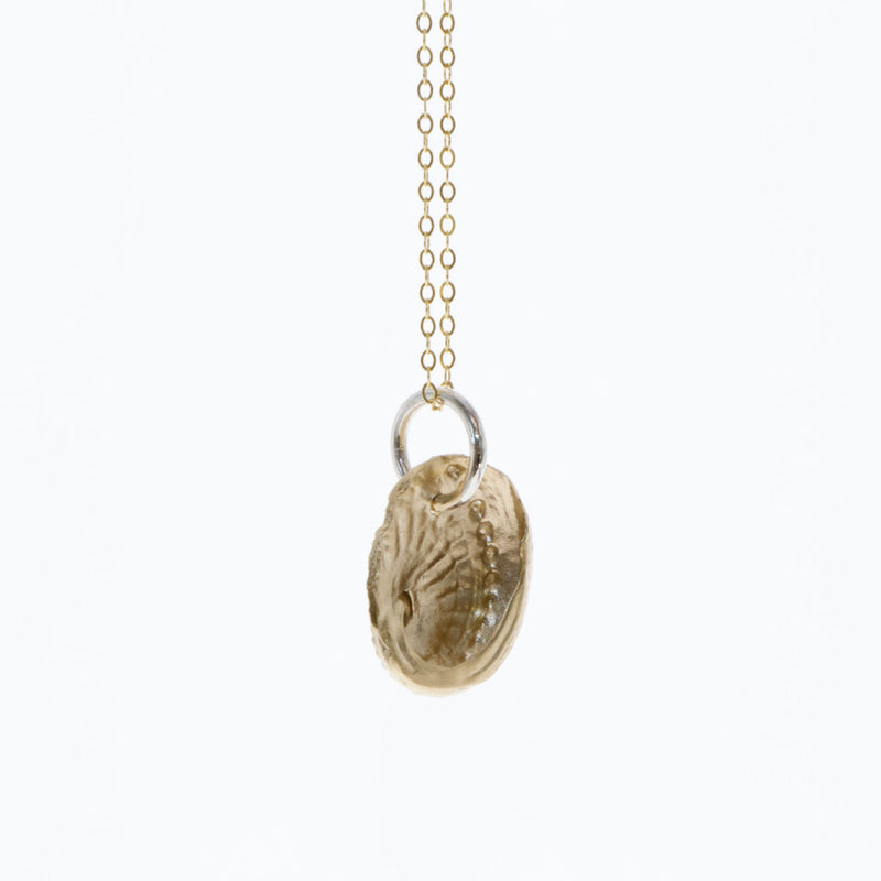 Tamahra Prowse jewellery design. 9 carat gold and sterling silver abalone shell pendant.