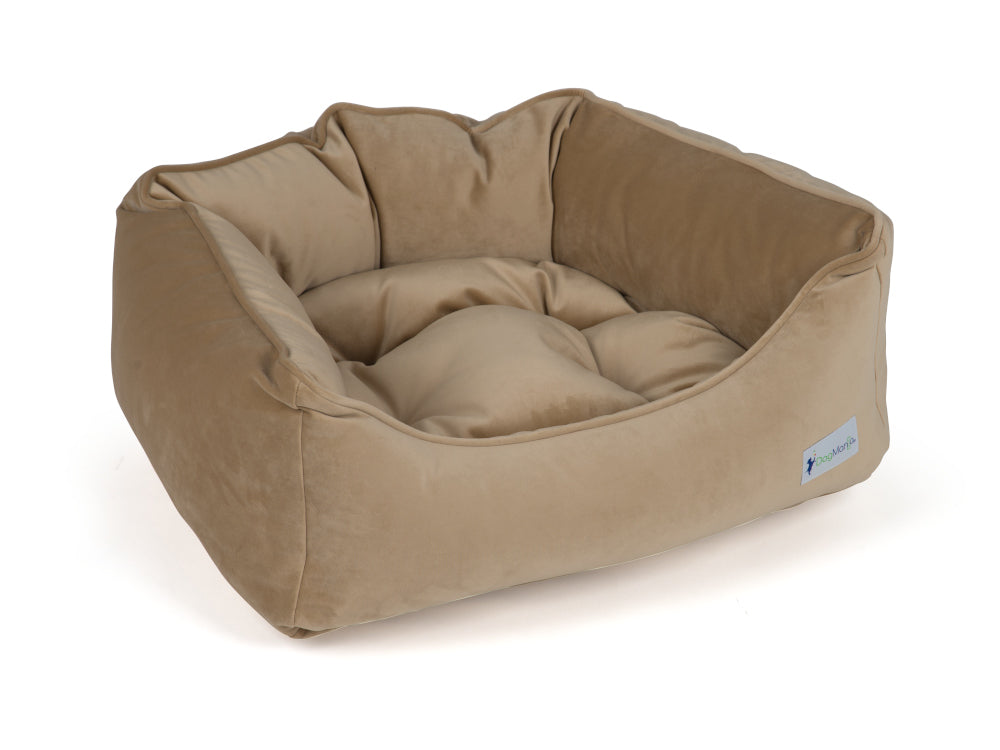 Golden Cream Dreamer Dog Bed | Pet Bed | DogMania