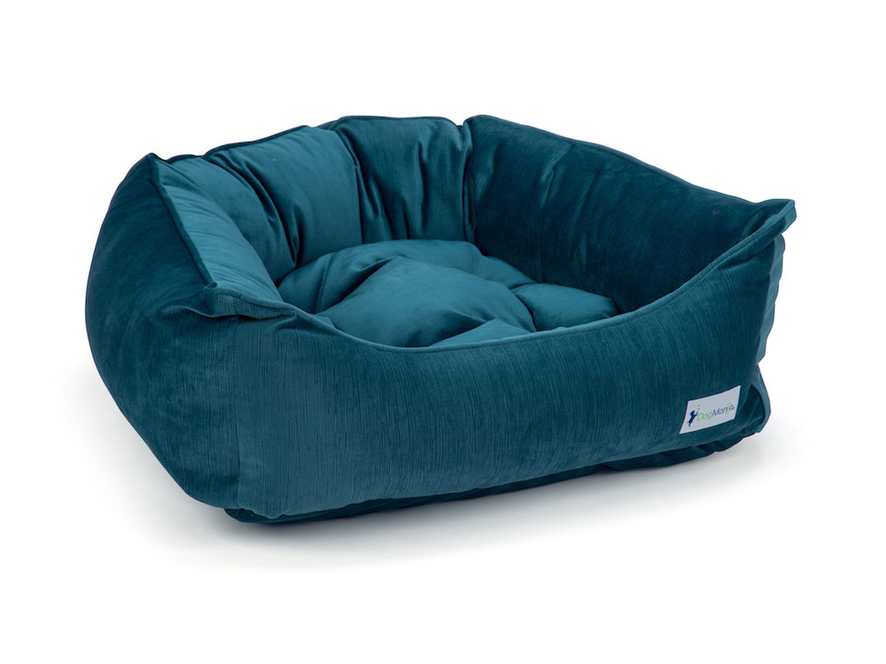 Teal Dreamer Bed | DogMania Dog Bed