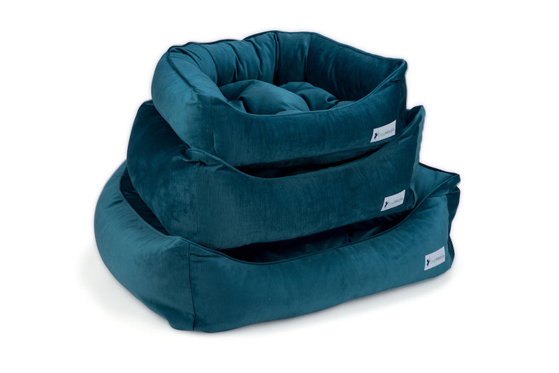 Teal Dreamer Bed Stack | DogMania Dog Bed