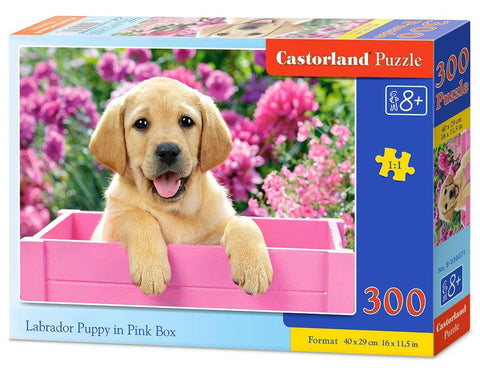 Castorland Παζλ 300 Κομμάτια Labrador Puppy in Pink Box (B-030071)