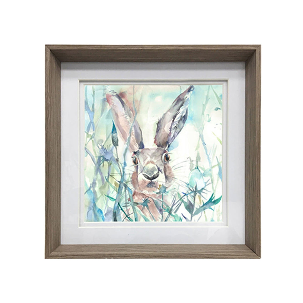 Jack Rabbit Framed Print (4402606637114)