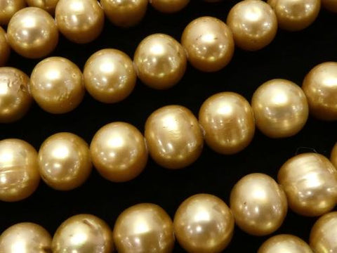 1strand $9.79! Fresh Water Pearl AA Potato 8mm Champagne Gold 1strand (aprx.15inch / 36cm)