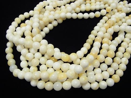 1strand $4.79! White Shell Yellow Mix Round 8mm 1strand (aprx.15inch / 38cm)