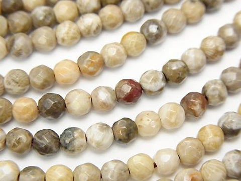 Fossil Coral  32Faceted Round 4mm half or 1strand (aprx.15inch/38cm)