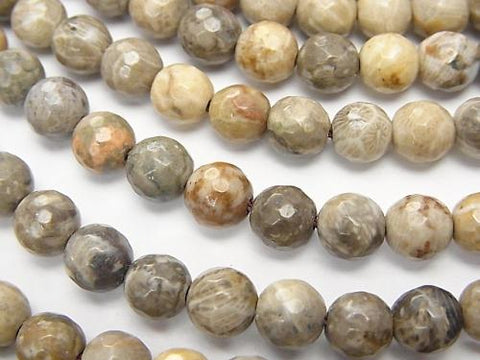 Fossil Coral  64Faceted Round 6mm half or 1strand (aprx.15inch/37cm)