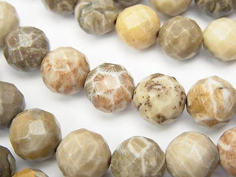 Fossil Coral  64Faceted Round 10mm half or 1strand (aprx.15inch/38cm)