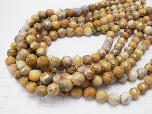 Crazy lace agate 64 Faceted Round 10 mm half or 1 strand (aprx.15 inch / 38 cm)