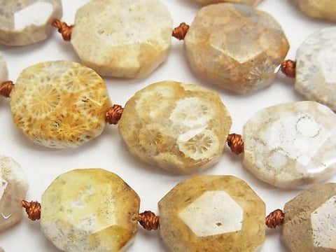 Fossil Coral  Flat Faceted Nugget  half or 1strand (aprx.15inch/38cm)