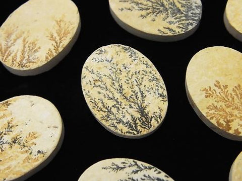 Germany Dendrite Jasper Oval Cabochon 20x15mm 3pcs $19.99!