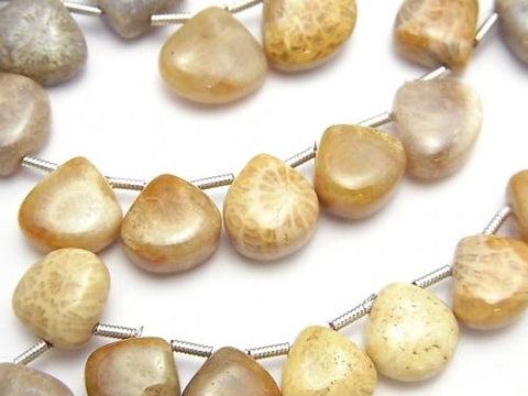 1strand $13.99Fossil Coral  Chestnut (Smooth)  1strand (aprx.7inch/18cm)